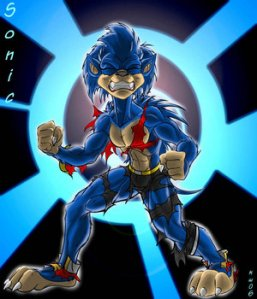 SONIC_DUDE_by_Black_rat[1]